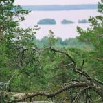 vargberget2