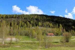 Siljeberget 150518